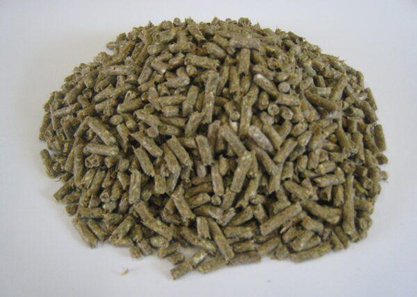 Grønpegasusløs