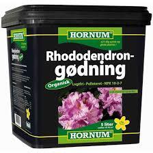 Hornum rhodo