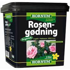 Hornum rosen