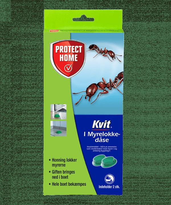 Kvit myrelokkedåser